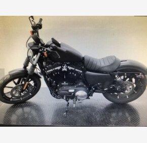 2020 Harley-Davidson Sportster for sale 201026031