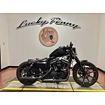 2020 Harley-Davidson Sportster for sale 201046098