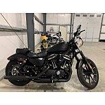 2020 Harley-Davidson Sportster Iron 883 for sale 201065759