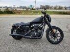2020 Harley-Davidson Sportster for sale 201074101
