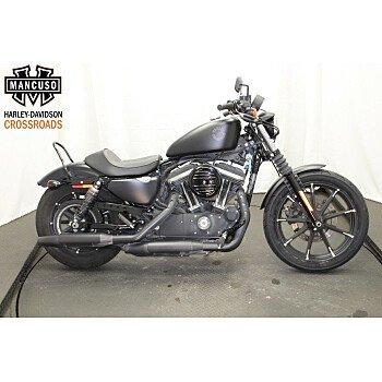 2020 Harley-Davidson Sportster Iron 883 for sale 201075330