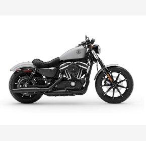 2020 Harley-Davidson Sportster Iron 883 for sale 201079335