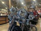 2020 Harley-Davidson Touring Road King for sale 201029787