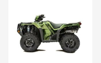 2020 Honda FourTrax Foreman Rubicon for sale 200821433