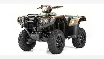 2020 Honda FourTrax Foreman Rubicon for sale 200855955