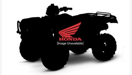 2020 Honda FourTrax Foreman for sale 200810476