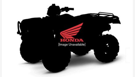 2020 Honda FourTrax Foreman for sale 200810481