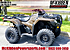 2020 Honda FourTrax Rancher for sale 200818902