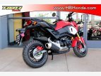 2020 Honda Grom ABS for sale 201081562