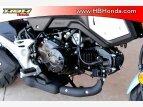 2020 Honda Grom for sale 201081565