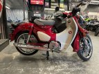 2020 Honda Super Cub C125 for sale 201041908
