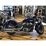 2020 Indian Scout for sale 200800780