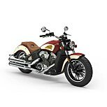 2020 Indian Scout for sale 200803795