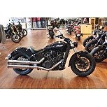 2020 Indian Scout for sale 200829540