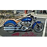 2020 Indian Scout for sale 200833513