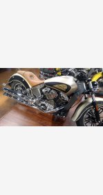 2020 Indian Scout for sale 200923263