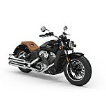 2020 Indian Scout for sale 200928225