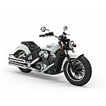 2020 Indian Scout for sale 201075888