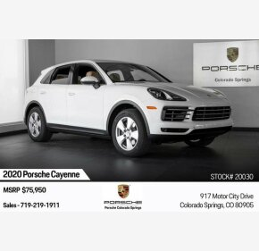 2020 Porsche Cayenne for sale 101219335