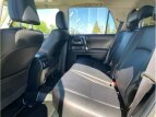 2020 Toyota 4Runner for sale 101536731