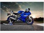 2020 Yamaha YZF-R6 for sale 201040234