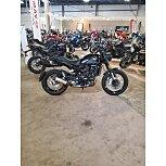 2021 Benelli Leoncino for sale 201059776