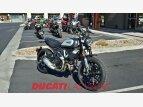 2021 Ducati Scrambler Desert Sled for sale 201173625