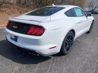 2021 Ford Mustang GT for sale 101458565