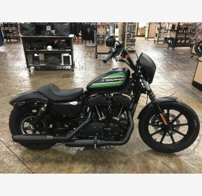 2021 Harley-Davidson Sportster Iron 1200 for sale 201025311