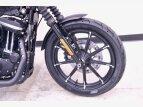 2021 Harley-Davidson Sportster Iron 883 for sale 201070515