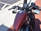 2021 Harley-Davidson Sportster for sale 201075465