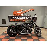 2021 Harley-Davidson Sportster Iron 883 for sale 201088120
