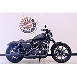 2021 Harley-Davidson Sportster Iron 883 for sale 201088505