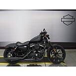 2021 Harley-Davidson Sportster Iron 883 for sale 201095526