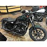 2021 Harley-Davidson Sportster Iron 883 for sale 201156342