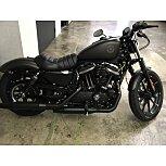 2021 Harley-Davidson Sportster Iron 883 for sale 201180211