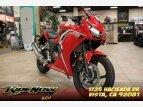 2021 Honda CBR300R ABS for sale 201115969