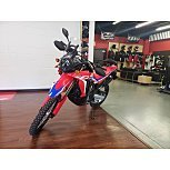 2021 Honda CRF300L Rally for sale 201186634
