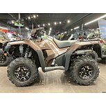2021 Honda FourTrax Foreman Rubicon for sale 200948862