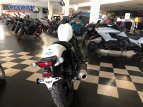 2021 Honda Rebel 500 ABS for sale 201070819