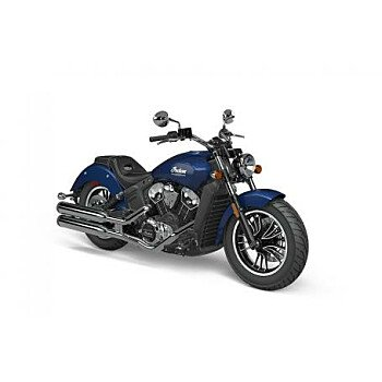 2021 Indian Scout for sale 200987622