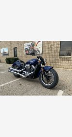2021 Indian Scout for sale 201026204
