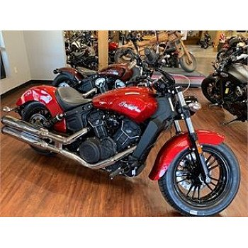 2021 Indian Scout for sale 201088278