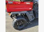 2021 SSR Bison for sale 201097765