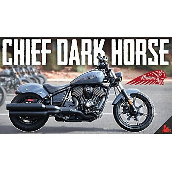 2022 Indian Chief for sale 201081806