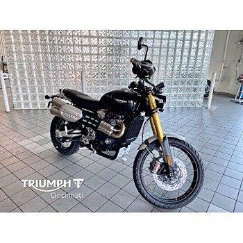 2022 Triumph Scrambler for sale 201143939
