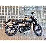 2022 Triumph Street Scrambler for sale 201085908
