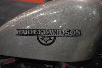 Harley-Davidson Is a More Approachable Brand Than You Might Think