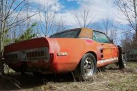 This Lost 1967 Ford Shelby GT500 EXP Prototype Has Been Found