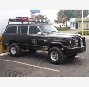 1980 Jeep Wagoneer for sale 100838759
